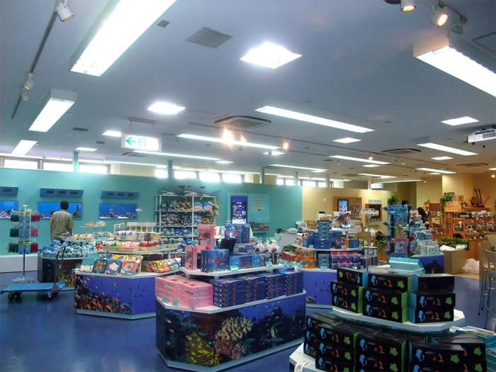 LEDランプ取り付け美ら海財団 国際通り店